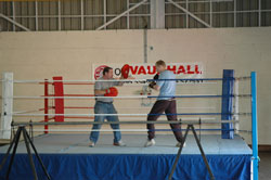 boxing ring professional